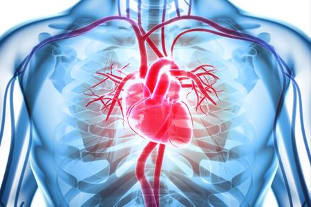 CardioScan®